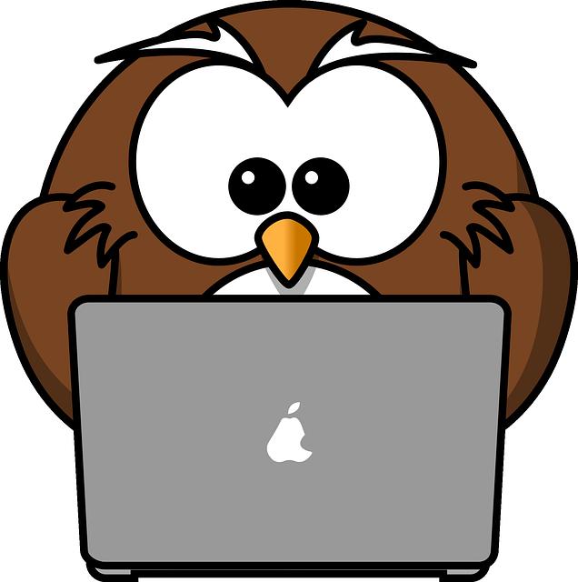 An owl on a computer